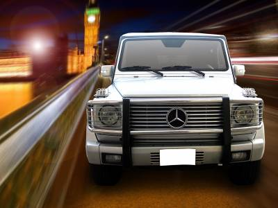 Black Horse Off Road - Grille Guard PGBZA008SS - Stainless Steel Mercedes-Benz G55 AMG & G550 - Image 1