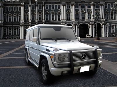 Black Horse Off Road - Grille Guard PGBZA008SS - Stainless Steel Mercedes-Benz G55 AMG & G550 - Image 2