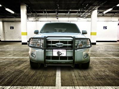 Front End Protection - Grille Guards - Black Horse Off Road - Grille Guard 17FB23MA - Black | Ford F-250, F-350, F-450, F-550