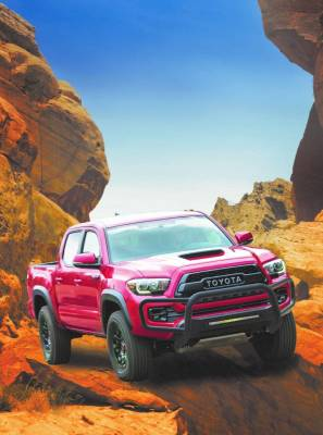 Black Horse Off Road - C | Beacon Front Runner | fits Toyota Tacoma 05 thru 21 - Image 1